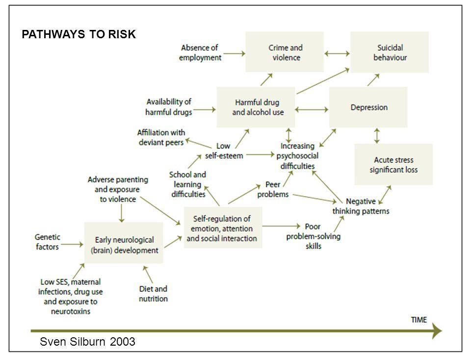 PATHWAYS TO RISK Sven Silburn 2003