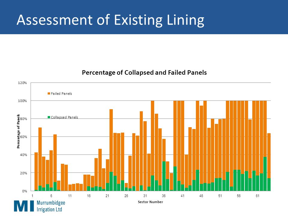 Assessment of Existing Lining