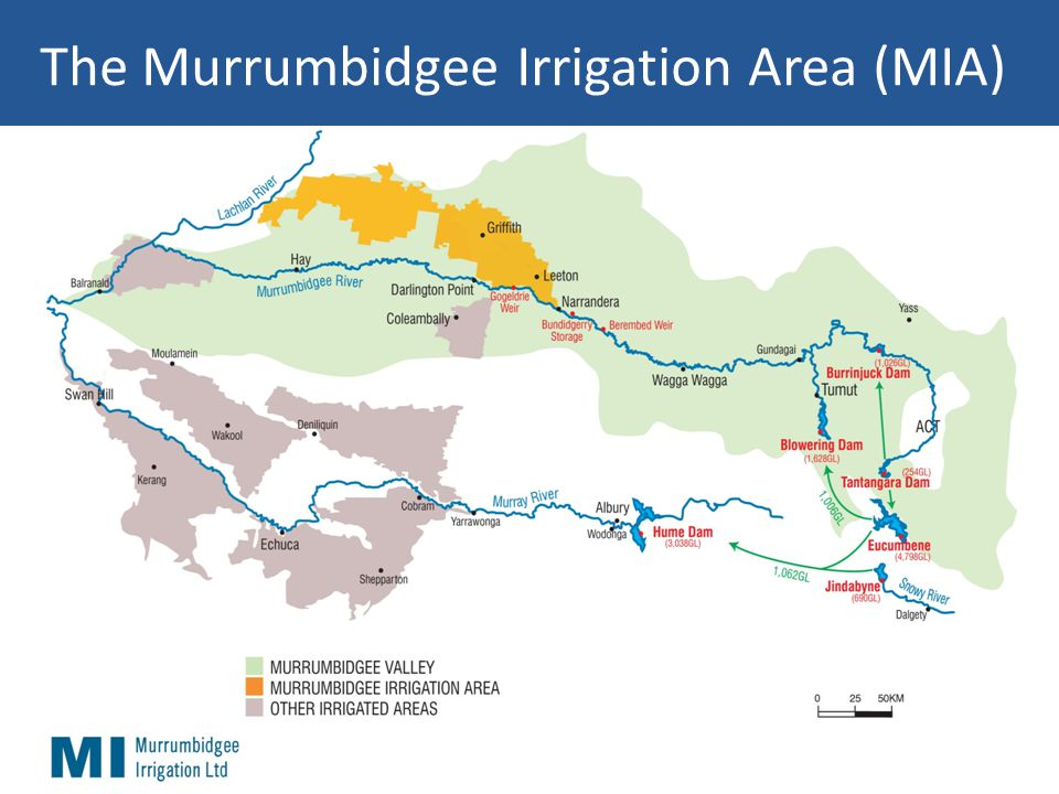 The Murrumbidgee Irrigation Area (MIA)
