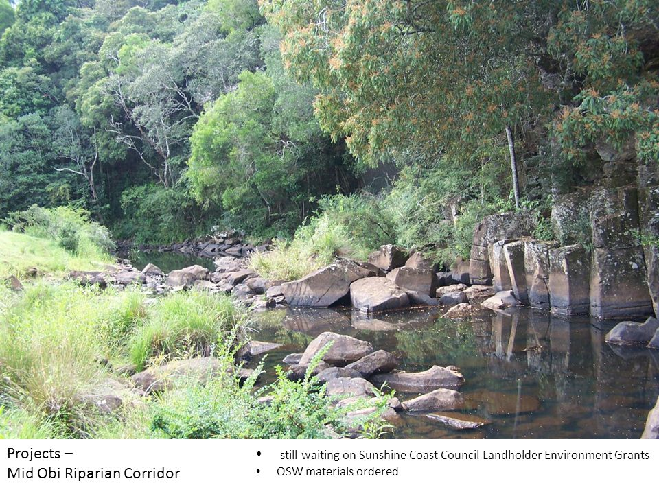 Projects – Mid Obi Riparian Corridor still waiting on Sunshine Coast Council Landholder Environment Grants OSW materials ordered