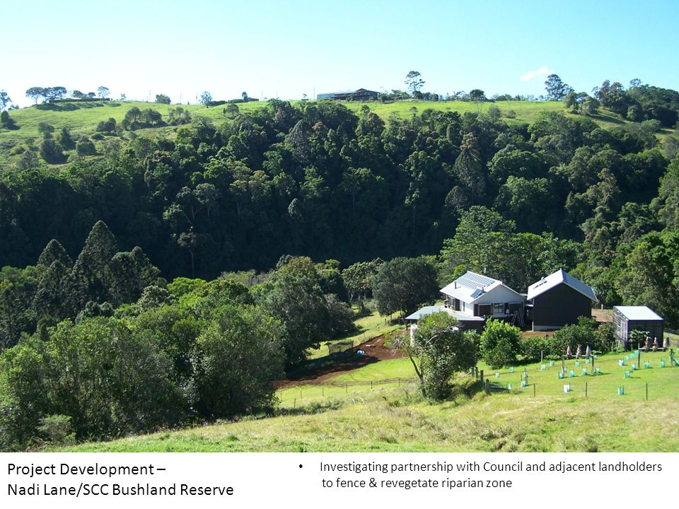 Project Development – Nadi Lane/SCC Bushland Reserve Investigating partnership with Council and adjacent landholders to fence & revegetate riparian zone