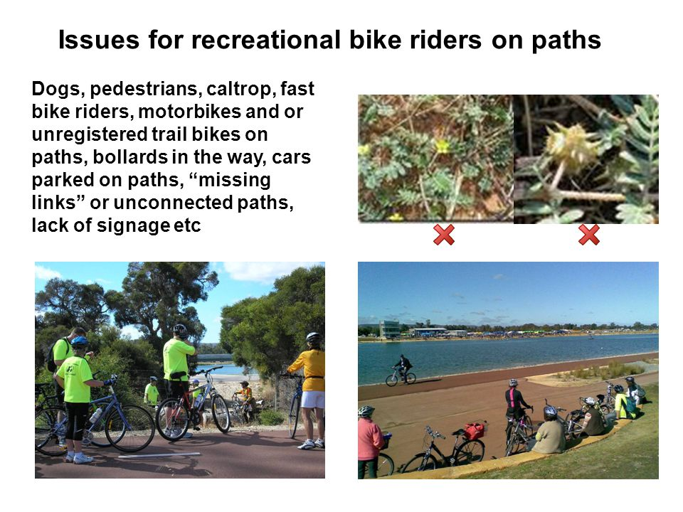 Dogs, pedestrians, caltrop, fast bike riders, motorbikes and or unregistered trail bikes on paths, bollards in the way, cars parked on paths, missing links or unconnected paths, lack of signage etc Issues for recreational bike riders on paths