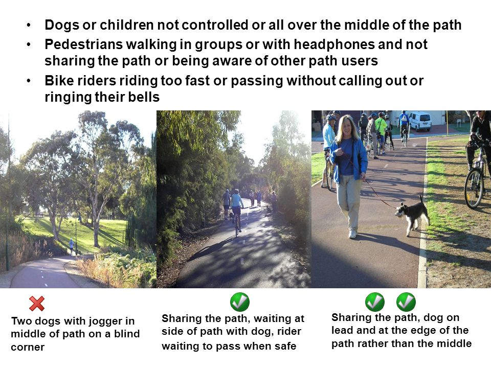 Dogs or children not controlled or all over the middle of the path Pedestrians walking in groups or with headphones and not sharing the path or being aware of other path users Bike riders riding too fast or passing without calling out or ringing their bells Sharing the path, dog on lead and at the edge of the path rather than the middle Two dogs with jogger in middle of path on a blind corner Sharing the path, waiting at side of path with dog, rider waiting to pass when safe