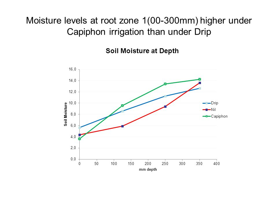 Moisture levels at root zone 1(00-300mm) higher under Capiphon irrigation than under Drip