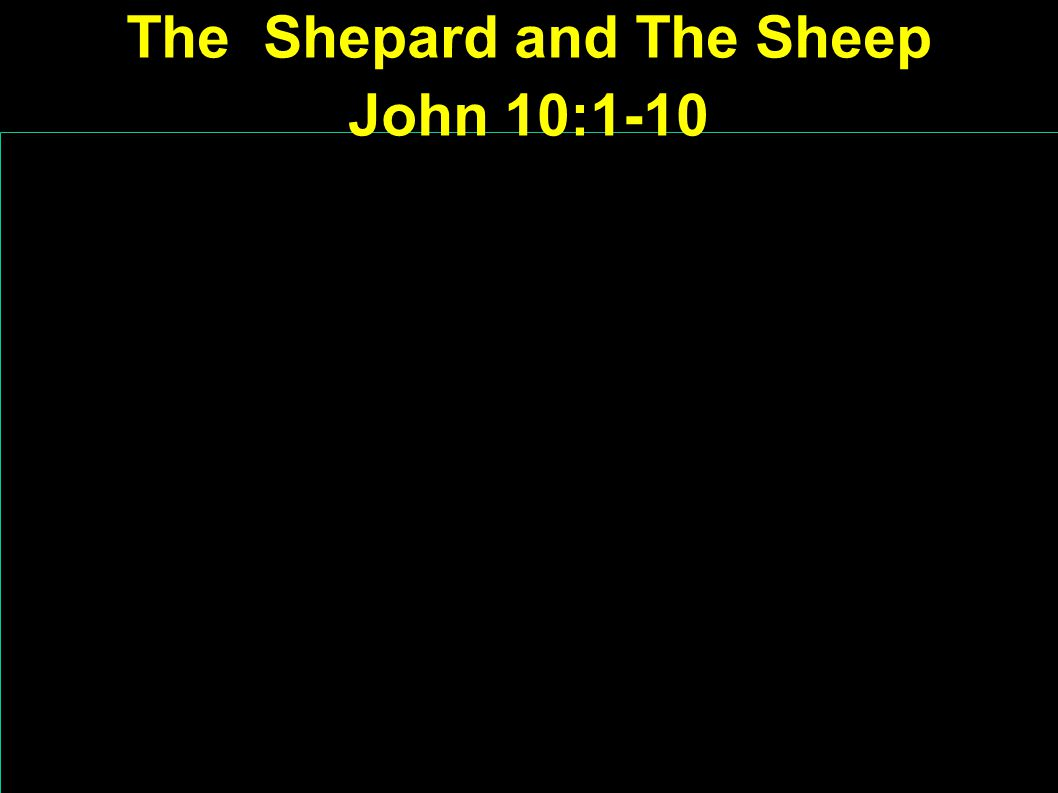 The Shepard and The Sheep John 10:1-10