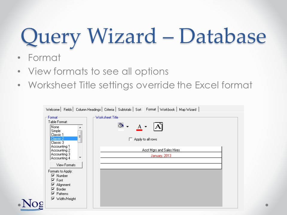 Query Wizard – Database Format View formats to see all options Worksheet Title settings override the Excel format