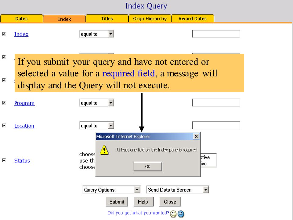 If you submit your query and have not entered or selected a value for a required field, a message will display and the Query will not execute.