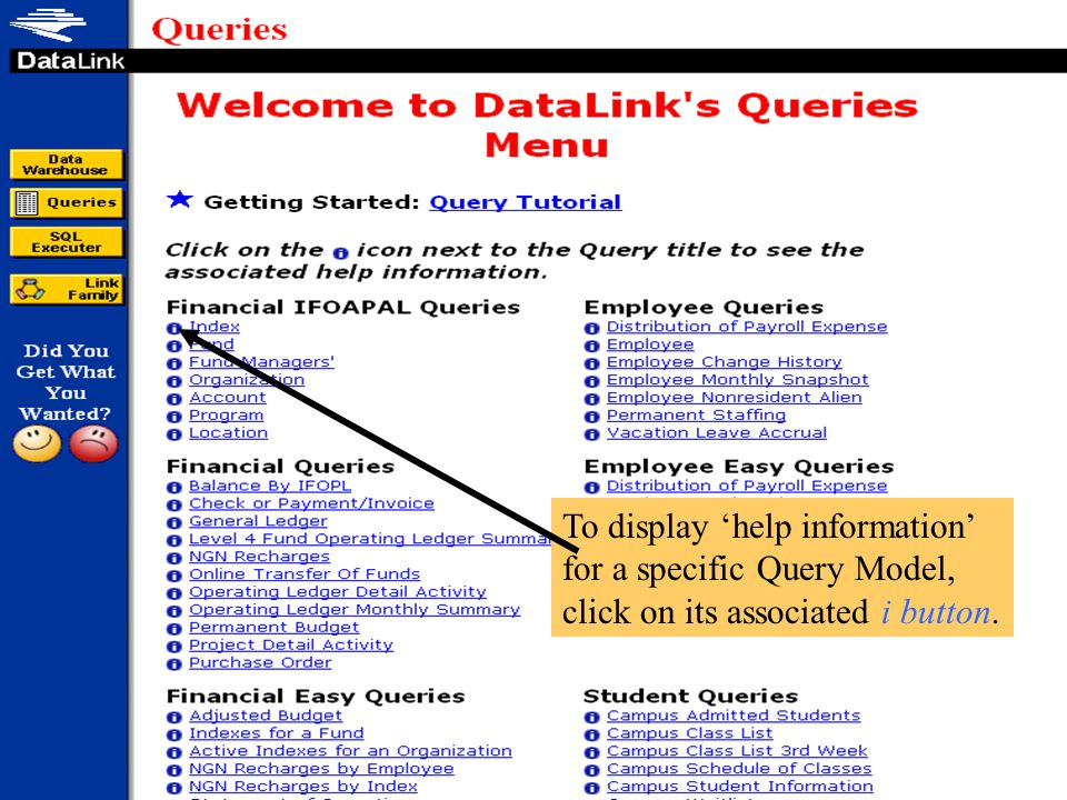 Query Options that supply a variety of additional functionality are available from this drop down list.