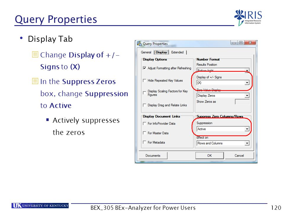 120 Query Properties Display Tab  Change Display of +/- Signs to (X)  In the Suppress Zeros box, change Suppression to Active  Actively suppresses