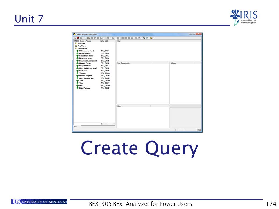 124 Unit 7 Create Query BEX_305 BEx-Analyzer for Power Users