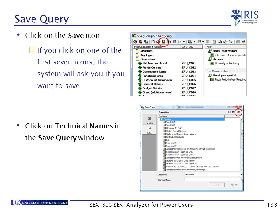 133 Save Query Click on the Save icon  If you click on one of the first seven icons, the system will ask you if you want to save Click on Technical N
