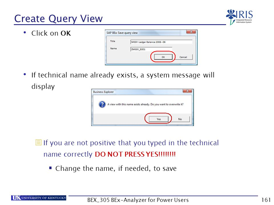 161 Create Query View Click on OK If technical name already exists, a system message will display  If you are not positive that you typed in the tech
