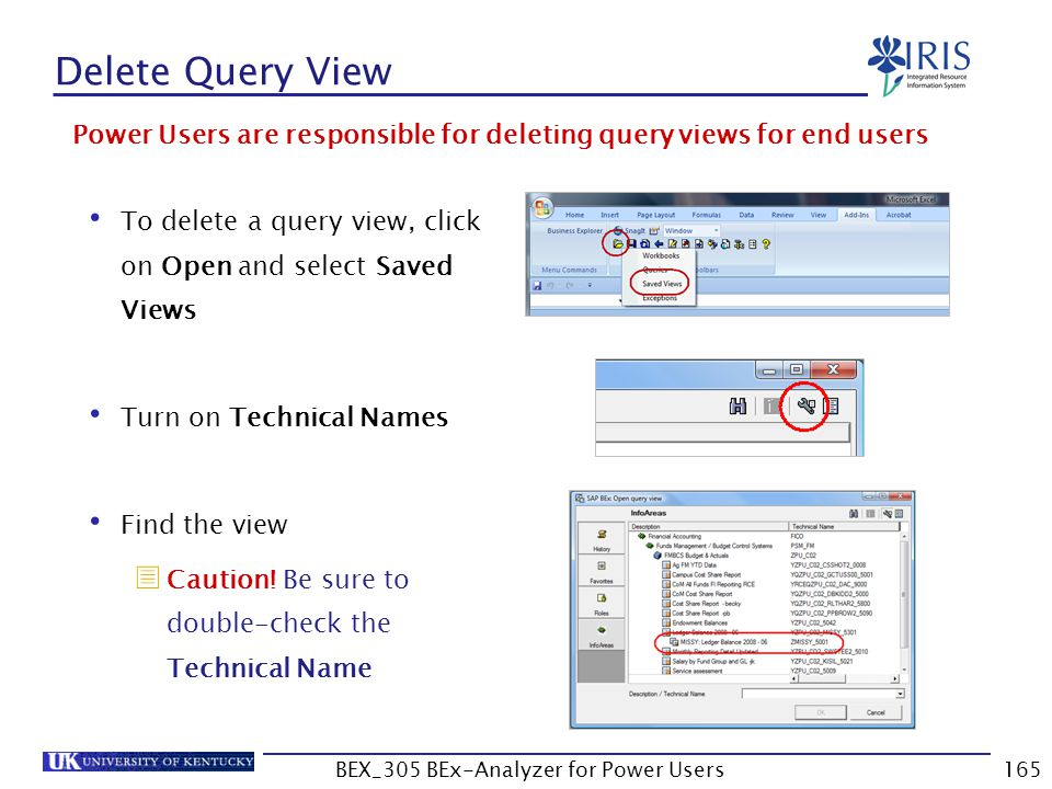 165 Delete Query View Power Users are responsible for deleting query views for end users To delete a query view, click on Open and select Saved Views
