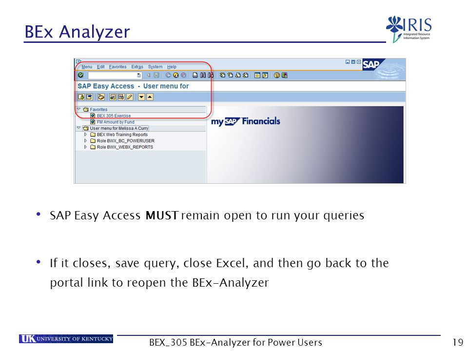 19 BEx Analyzer SAP Easy Access MUST remain open to run your queries If it closes, save query, close Excel, and then go back to the portal link to reo