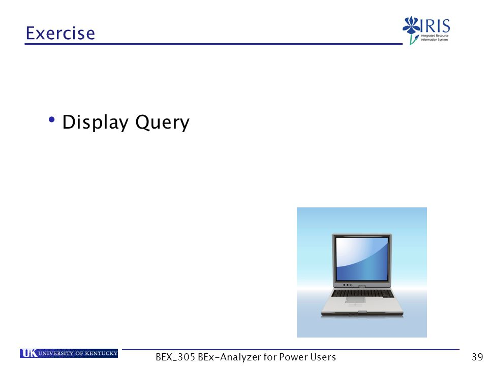 39 Exercise Display Query BEX_305 BEx-Analyzer for Power Users