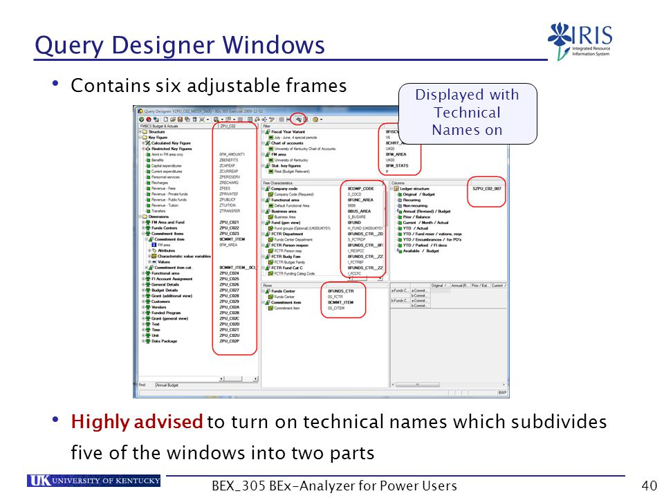 Contains six adjustable frames Highly advised to turn on technical names which subdivides five of the windows into two parts 40 Query Designer Windows