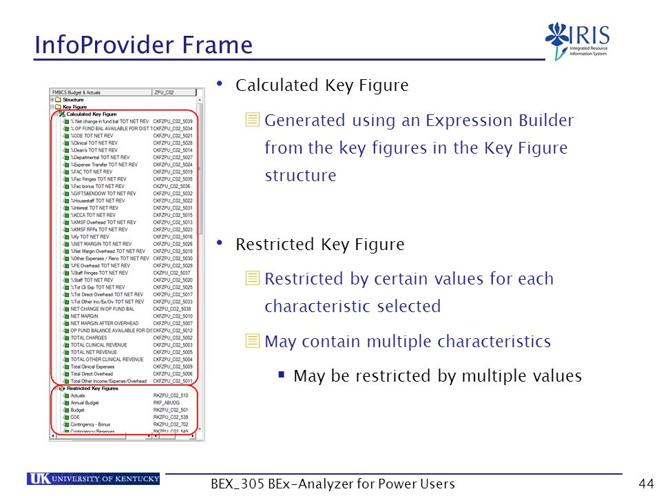 44 InfoProvider Frame Calculated Key Figure  Generated using an Expression Builder from the key figures in the Key Figure structure Restricted Key Fi