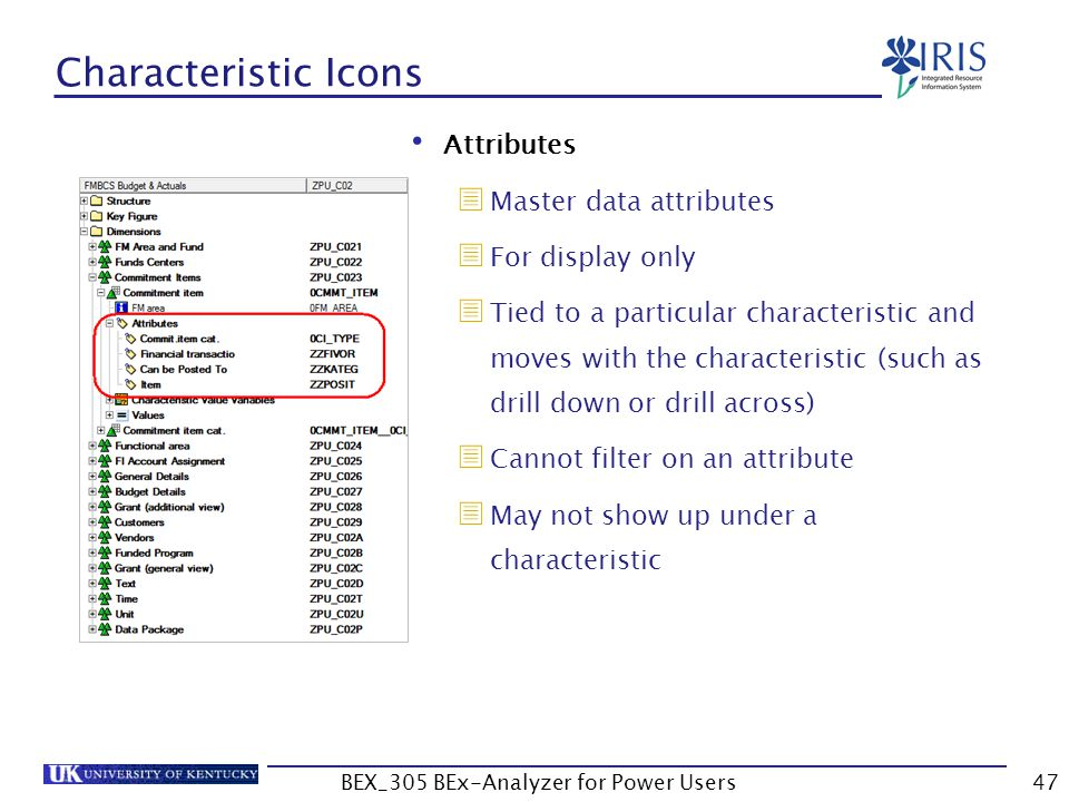 47 Characteristic Icons Attributes  Master data attributes  For display only  Tied to a particular characteristic and moves with the characteristic