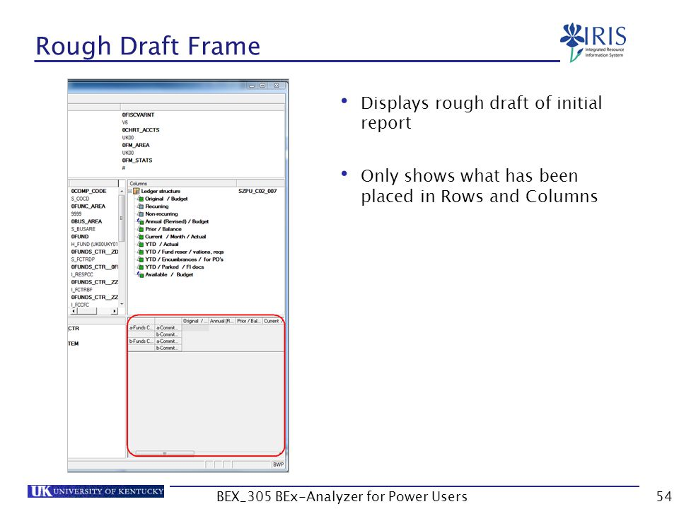 54 Rough Draft Frame Displays rough draft of initial report Only shows what has been placed in Rows and Columns BEX_305 BEx-Analyzer for Power Users