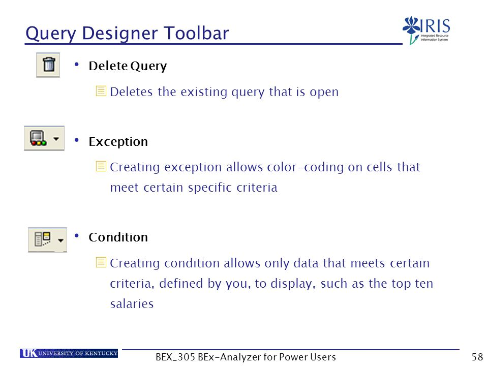 58 Query Designer Toolbar Delete Query   Deletes the existing query that is open Exception   Creating exception allows color-coding on cells that