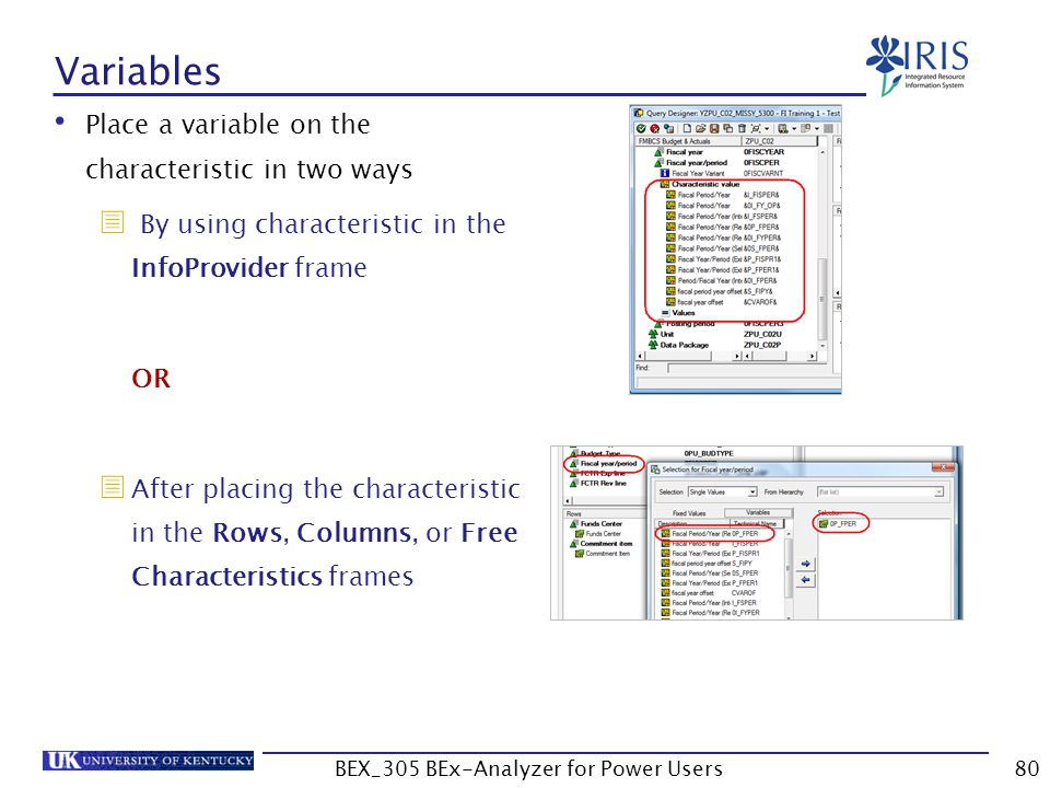 80 Variables Place a variable on the characteristic in two ways  By using characteristic in the InfoProvider frame OR  After placing the characteris