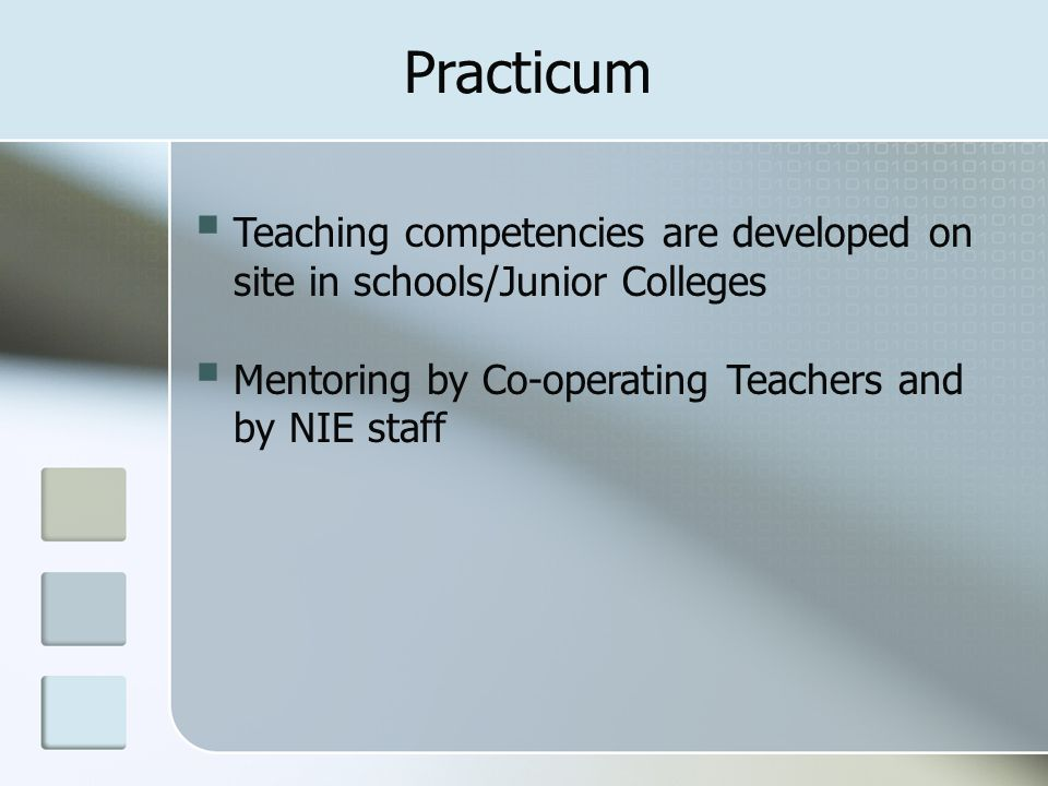  Teaching competencies are developed on site in schools/Junior Colleges  Mentoring by Co-operating Teachers and by NIE staff