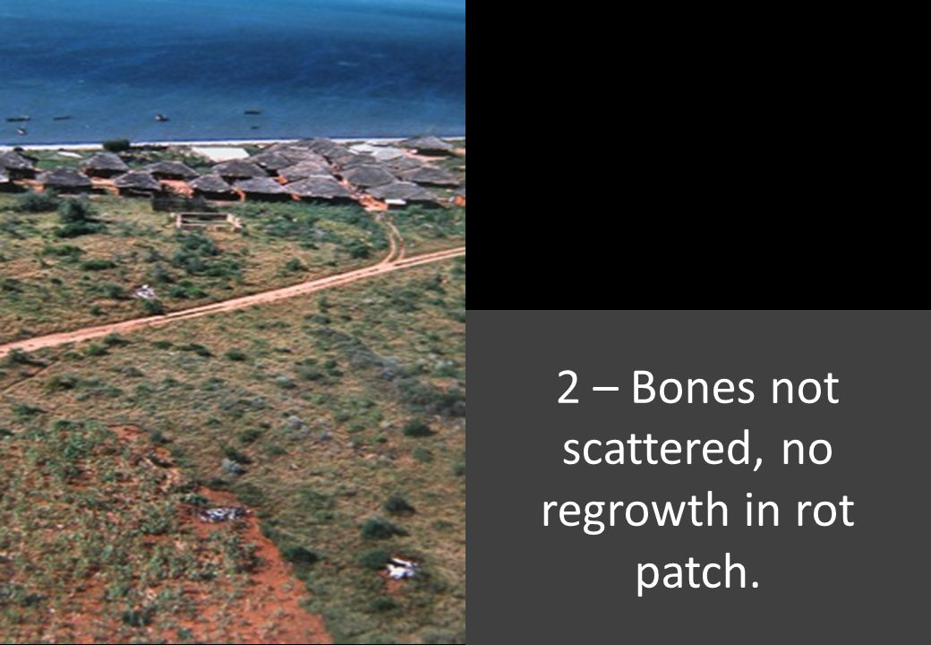 2 – Bones not scattered, no regrowth in rot patch.