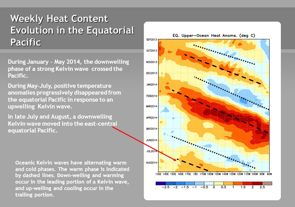 Weekly Heat Content Evolution in the Equatorial Pacific Oceanic Kelvin waves have alternating warm and cold phases.