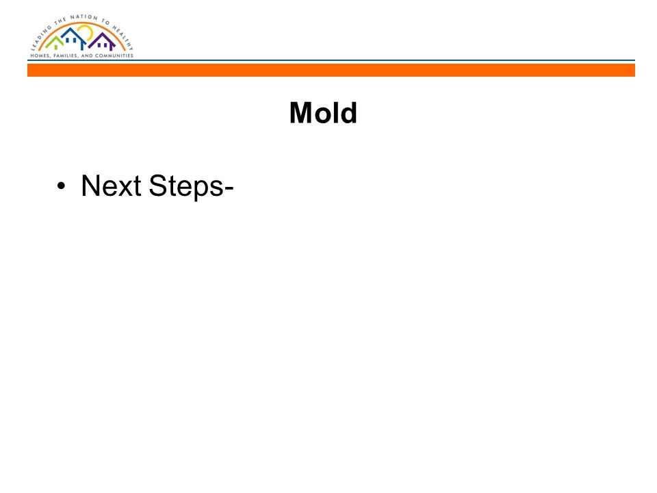 Mold Next Steps-