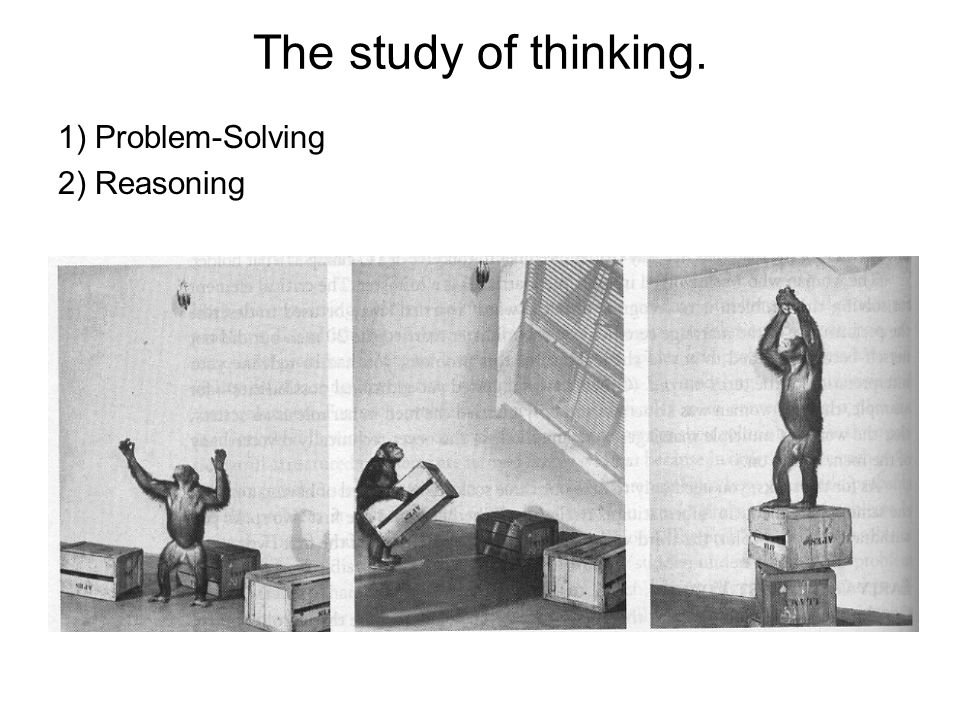 The study of thinking. 1) Problem-Solving 2) Reasoning