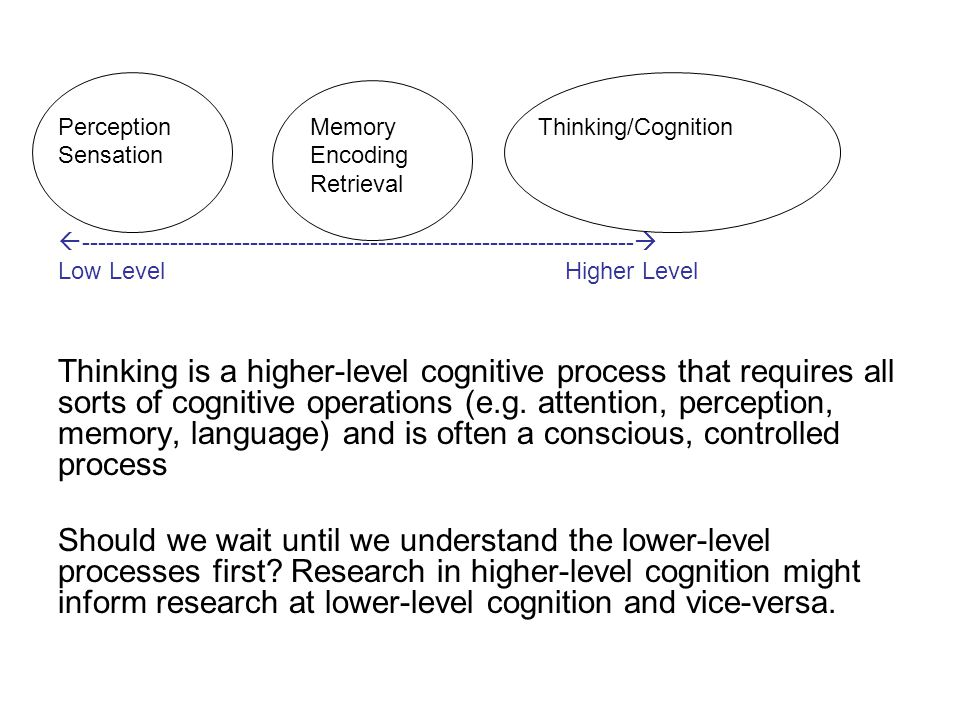 PerceptionMemoryThinking/Cognition Sensation Encoding Retrieval  ---------------------------------------------------------------------  Low Level Higher Level Thinking is a higher-level cognitive process that requires all sorts of cognitive operations (e.g.