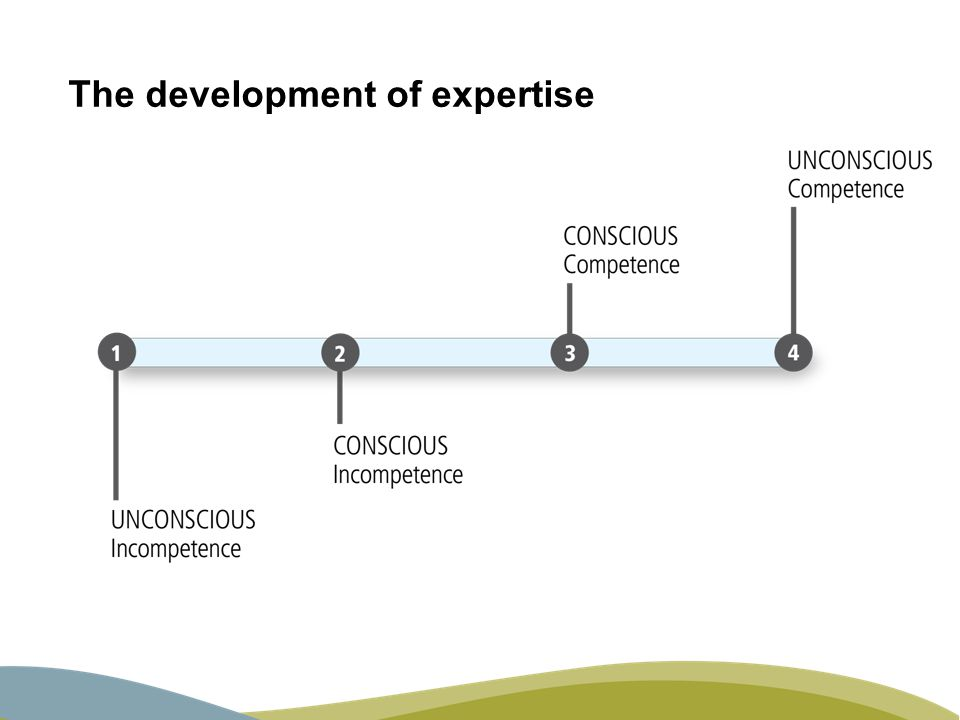 The development of expertise