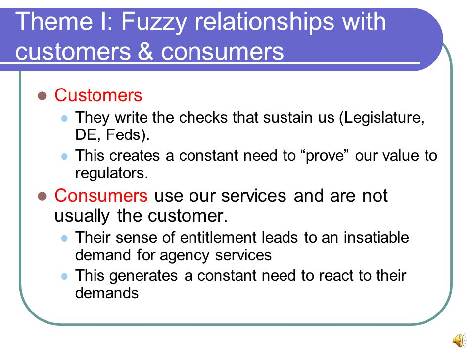 Theme I: Fuzzy relationships with customers & consumers