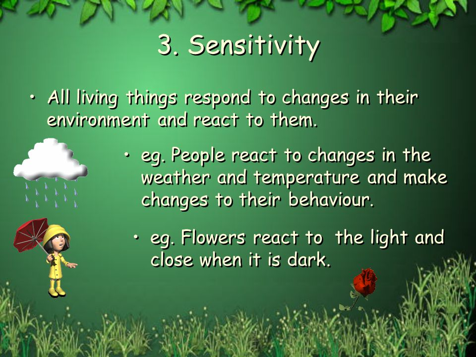 3. Sensitivity All living things respond to changes in their environment and react to them. eg. People react to changes in the weather and temperature