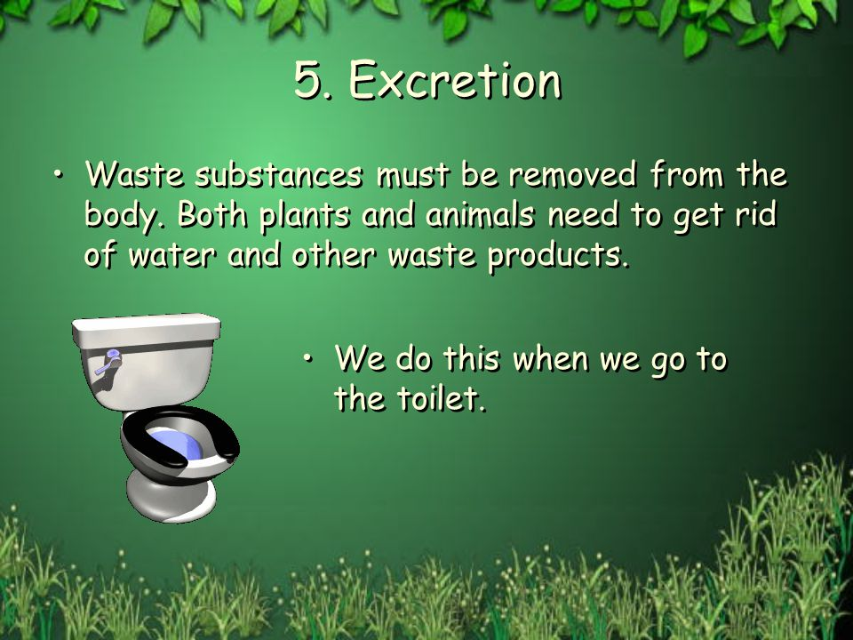 5. Excretion Waste substances must be removed from the body. Both plants and animals need to get rid of water and other waste products. We do this whe