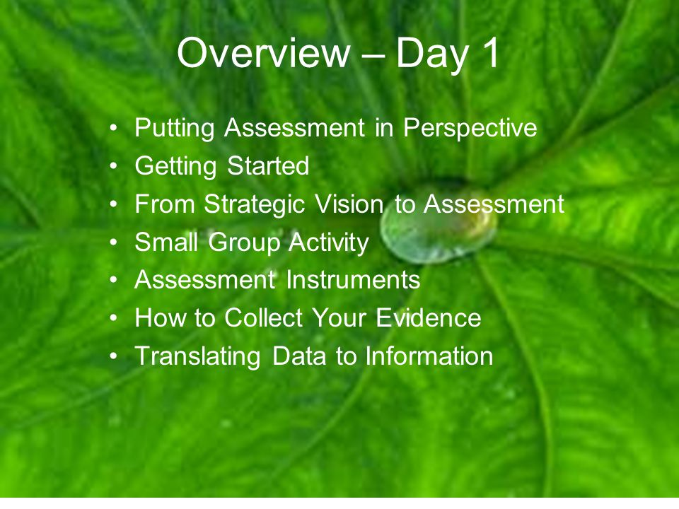 Putting Assessment in Perspective Institutional Mission Intended Educational Process Gardiner, L.
