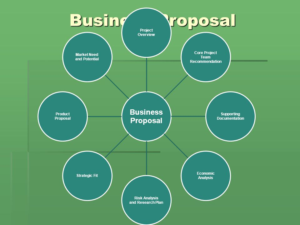 Business Proposal Business Proposal Project Overview Core Project Team Recommendation Supporting Documentation Economic Analysis Risk Analysis and Research Plan Strategic Fit Product Proposal Market Need and Potential