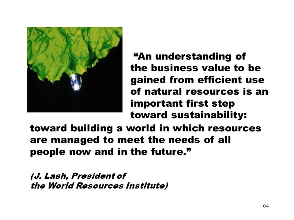 64 An understanding of the business value to be gained from efficient use of natural resources is an important first step toward sustainability: toward building a world in which resources are managed to meet the needs of all people now and in the future. (J.