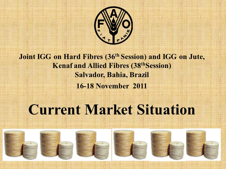 Joint IGG on Hard Fibres (36 th Session) and IGG on Jute, Kenaf and Allied Fibres (38 th Session) Salvador, Bahia, Brazil 16-18 November 2011 Current Market Situation