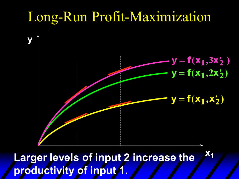 x1x1 y Larger levels of input 2 increase the productivity of input 1.