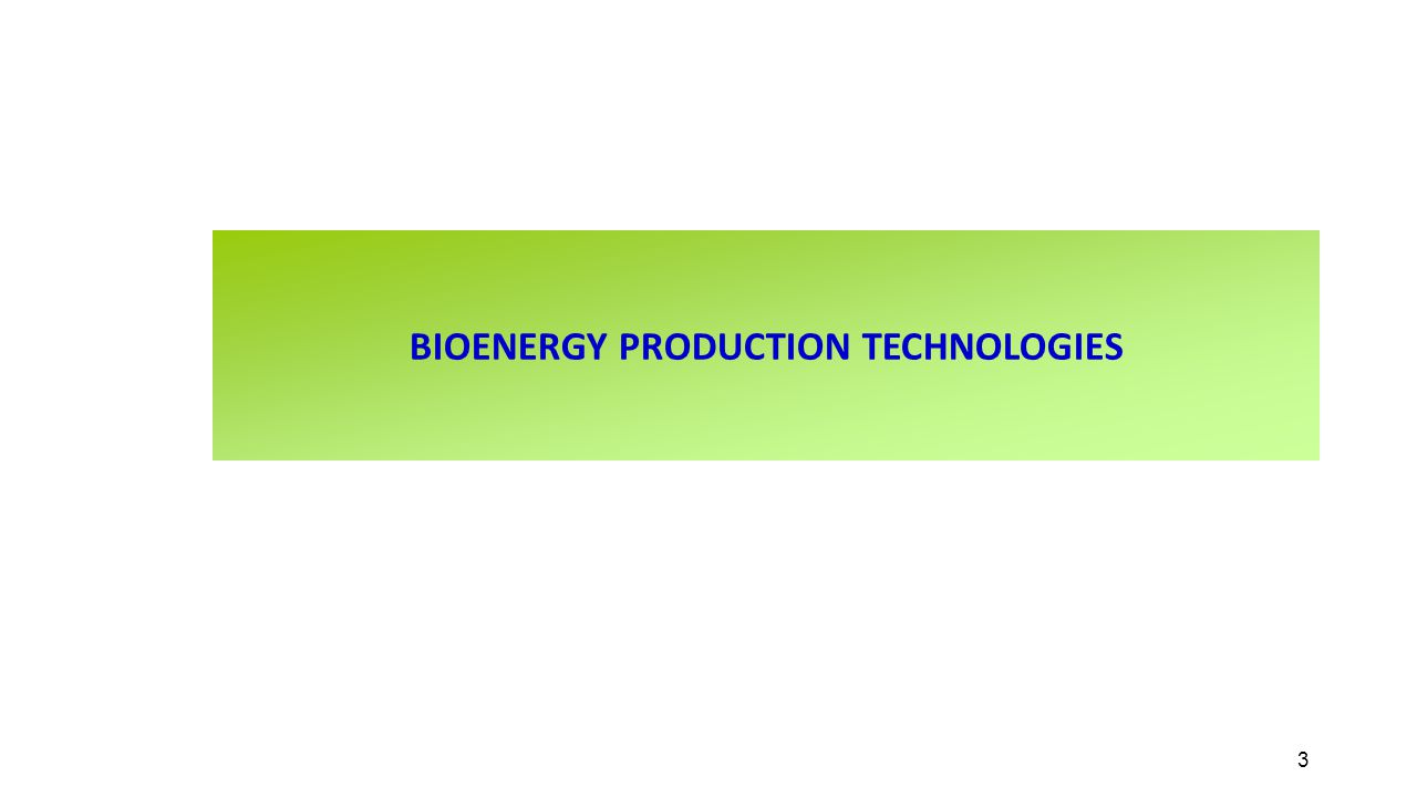 BIOENERGY PRODUCTION TECHNOLOGIES 3