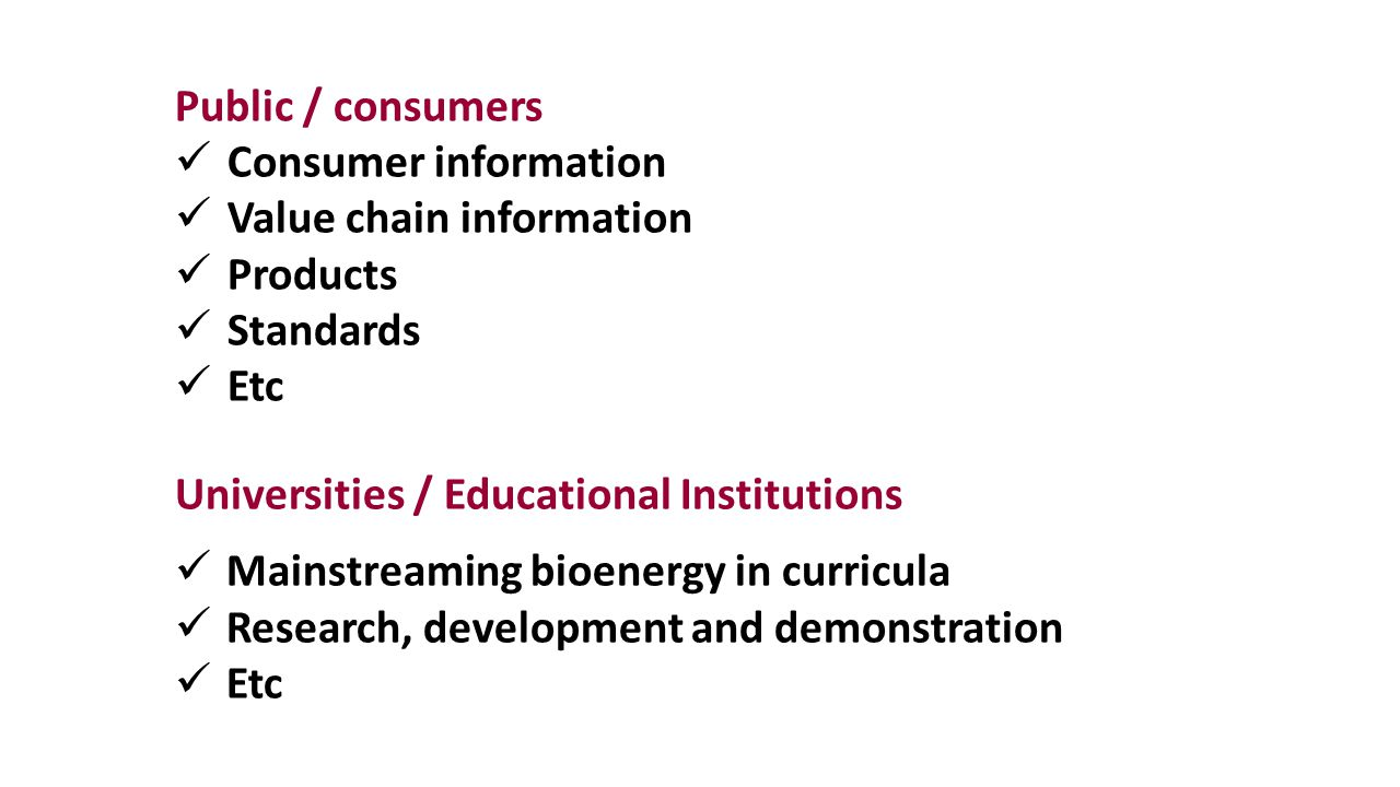 Public / consumers Consumer information Value chain information Products Standards Etc Universities / Educational Institutions Mainstreaming bioenergy in curricula Research, development and demonstration Etc