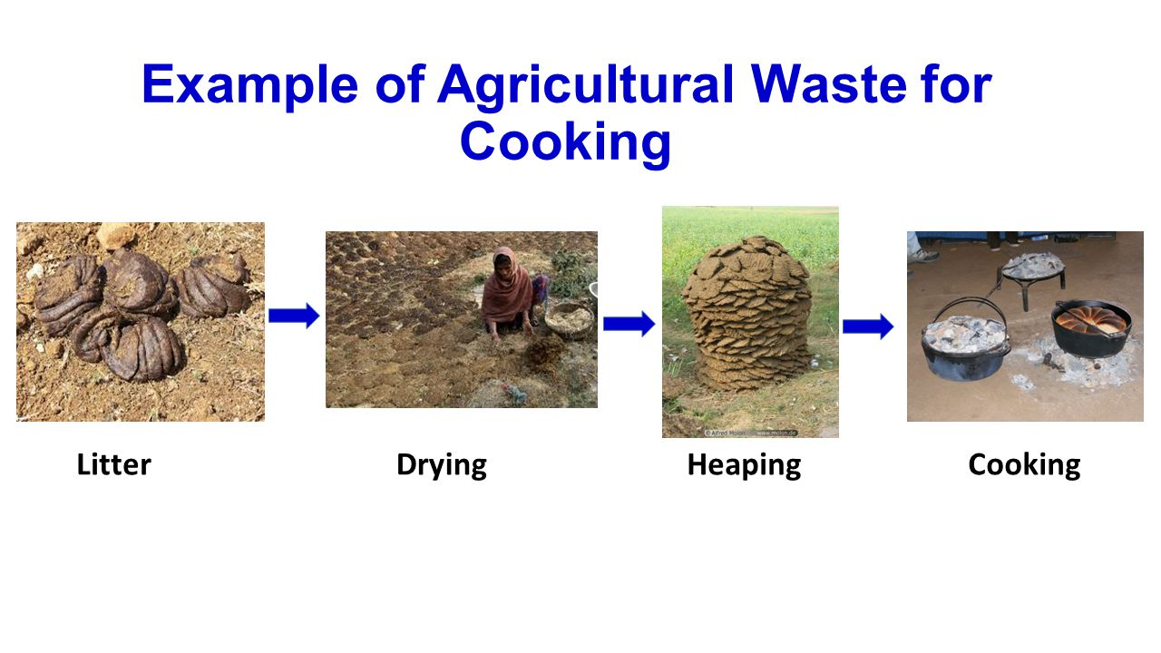 LitterDryingHeapingCooking Example of Agricultural Waste for Cooking