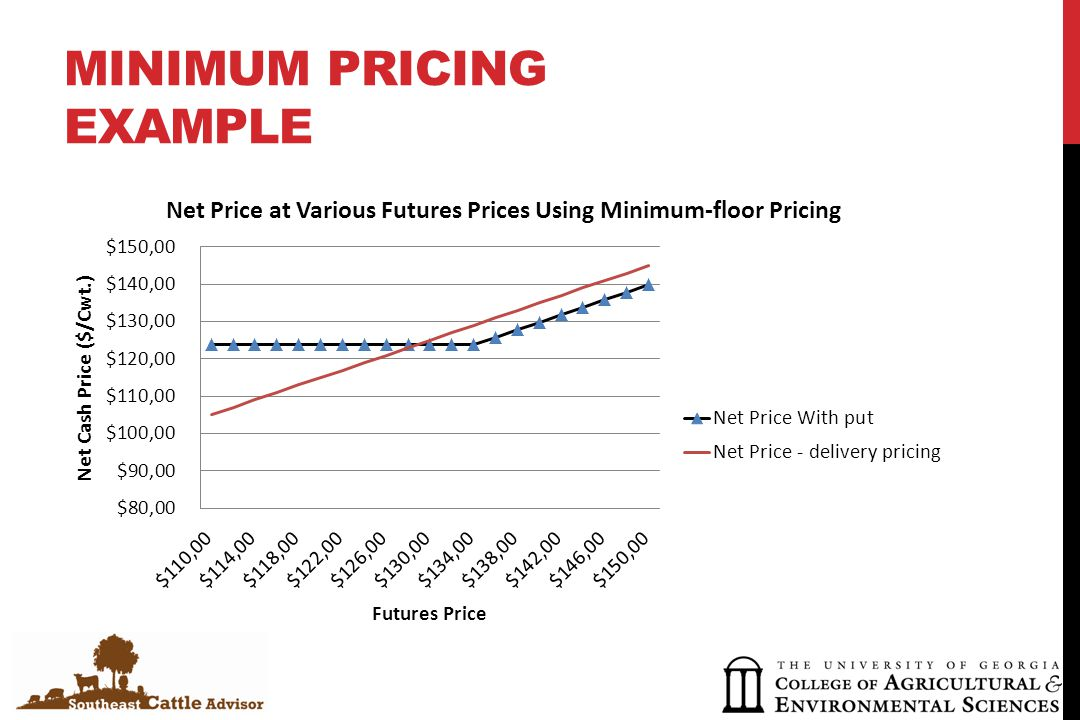 MINIMUM PRICING EXAMPLE