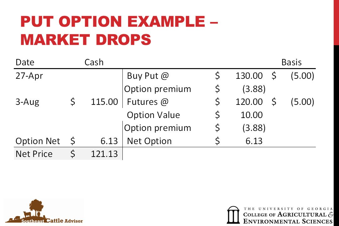 PUT OPTION EXAMPLE – MARKET DROPS