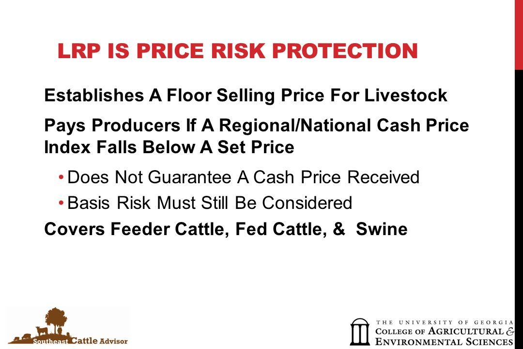LRP IS PRICE RISK PROTECTION Establishes A Floor Selling Price For Livestock Pays Producers If A Regional/National Cash Price Index Falls Below A Set Price Does Not Guarantee A Cash Price Received Basis Risk Must Still Be Considered Covers Feeder Cattle, Fed Cattle, & Swine
