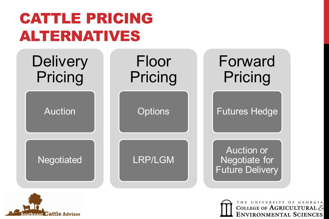 BASIC DECISIONS Do nothing Forward price Pre-sell through an auction Hedge Minimum price LRP Option