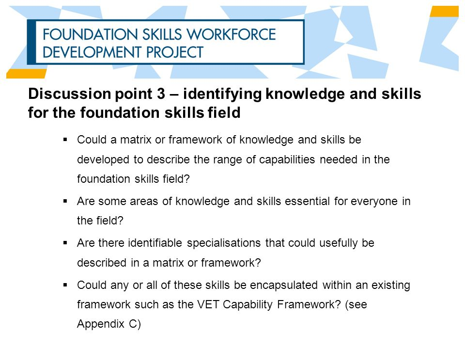 Discussion point 3 – identifying knowledge and skills for the foundation skills field  Could a matrix or framework of knowledge and skills be developed to describe the range of capabilities needed in the foundation skills field.