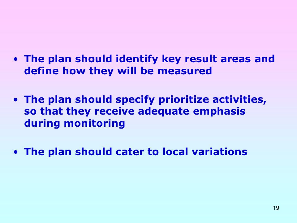 19 The plan should identify key result areas and define how they will be measured The plan should specify prioritize activities, so that they receive