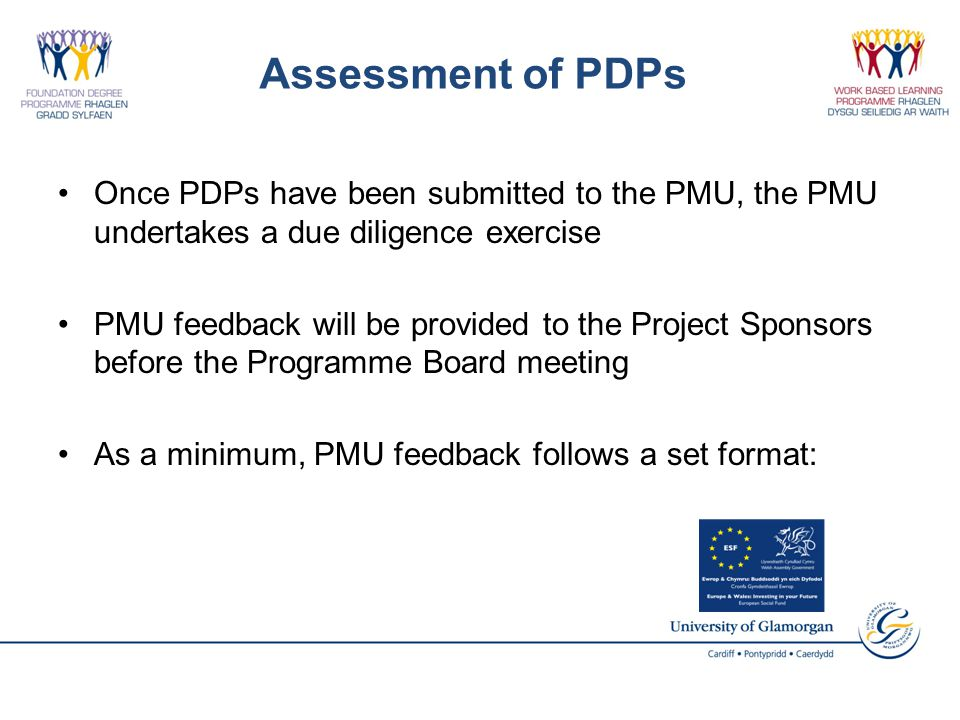 Assessment of PDPs Once PDPs have been submitted to the PMU, the PMU undertakes a due diligence exercise PMU feedback will be provided to the Project Sponsors before the Programme Board meeting As a minimum, PMU feedback follows a set format: